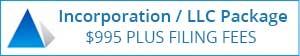 Bellevue Incorporation LLC Package